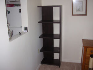 NEW PRICE - only $25!!  Black bookcase