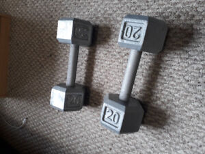 Two 20 lbs Dumbbells ($35 each)