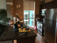 Downtown 1 Bedroom furnished Apartment for weekly rent