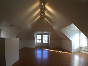 HUGE 2 LEVEL 2/3 BEDROOM W/LOFT, STEPS TO DOWNTOWN, ONLY $1395!!