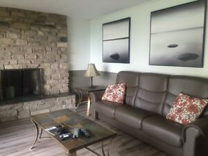 FURNISHED lakefront home available by the month Sarnia Sarnia Area image 3