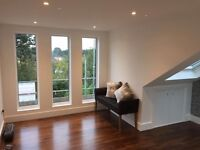 Carpenter required - Loft conversions and general carpentry