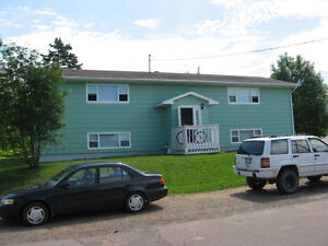 Sunny downstairs two bedroom apartment close to NSCC