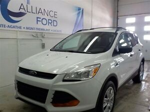 Ford Escape - 2013