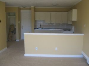 1 Bdrm + Balcony, Large living space, Full Kitchen, Free WiFi