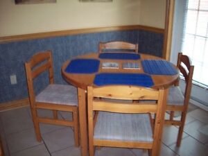 1 table and 4 chairs,excellent condition