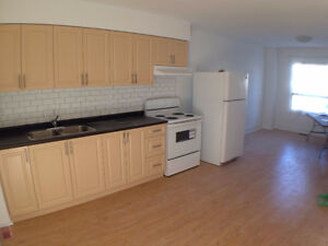 Brand New Renovated 2story 3BR apartment 3min to Woodbine subway