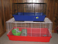 Rabbit and Guinea pigs Cages
