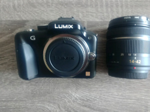 Panasonic G3 with a 14 to 42mm lens  for $250