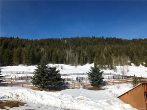 IDEALLY LOCATED LOG HOME!