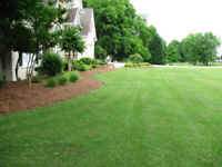 Spring Cleanup and Fertilizing