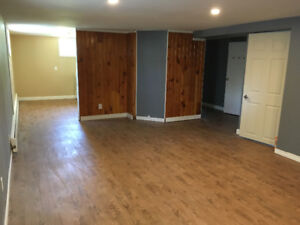 Bright newly renovated basement apartment for rent