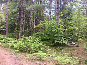 50 ACRE PARCEL FOR SALE NEAR BANCROFT ONTARIO