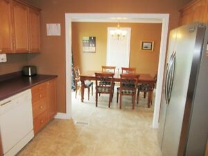 106A George Pierceys Lane in Hearts Content - MLS 1130576 St. John's Newfoundland image 4