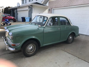 Riley For Sale