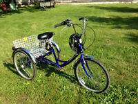 ADULT TRICYCLE 5-speed SHIMANO PARKLANE TOP  LINE + ACC
