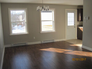 New executive townhouse on doorsteps of MUN $329,900