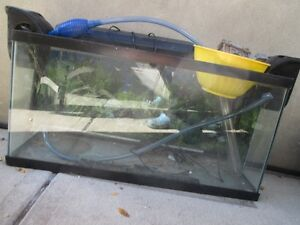 Fish tank - 30 gallons and all accessories
