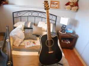 Segovia Acoustic Guitar with case