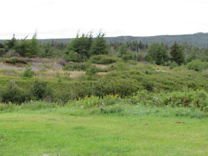 1 MILLVILLE ROAD, AVONDALE..  SECLUDED..1 ACRE LOT St. John's Newfoundland image 19
