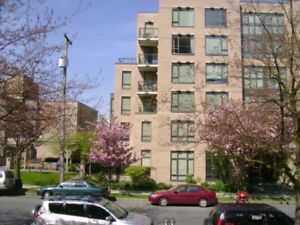 Large 1Bdrm apt with Patio, insuitelaundry at Cambie & Broadway