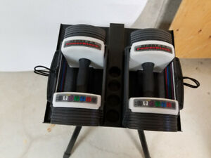 Powerblock weights and stand