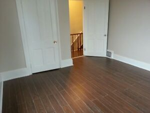 Private room in house available immediately Cambridge Kitchener Area image 1