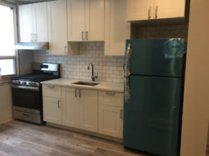 Two Newly Renovated Semi-Detached Homes in Corktown for Rent