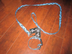 Puppy leash and collar