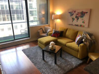 Roommate wanted at ideal downtown location: 438 King St W