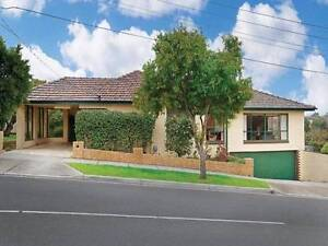 LARGE ROOM available near Deakin University Burwood Whitehorse Area Preview