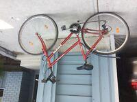 Ladie's hybrid bike- multi track