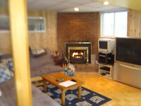 Clean cozy walkout to yard 2 fireplaces lots of light