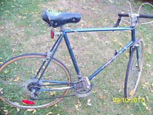 Vintage supercycle 12 speed