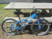 Myka Comp Specialized's D4W mountain/trail bike - $400