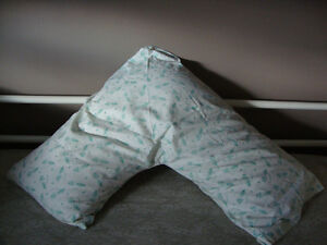 pillow with cover - never used... OBO
