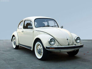 Looking for classic VW Beetle