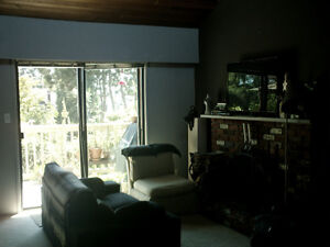 Bright, Southfacing, City View (Lonsdale) North Shore Greater Vancouver Area image 2