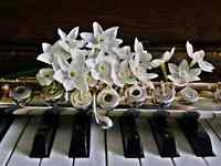 Piano and/or Flute Lessons!