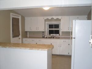 UPPER FLOOR DUPLEX - Walk to GD Hospital, H&L Included