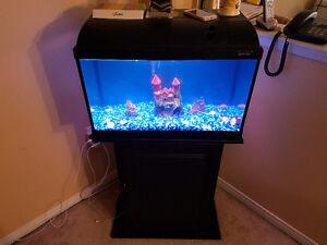 "ACQUARIUM : FISH TANK WITH STAND Size: 12"" X 24"" X 42"""