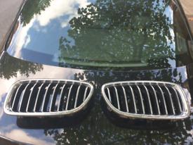 BMW 520i grills
