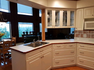 custom built kitchen cupboards and appliances