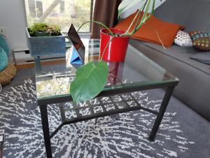 Dinning table + set of chairs + coffee table