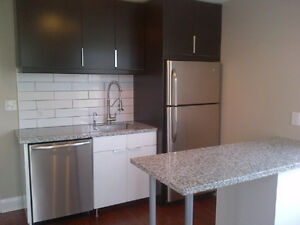 Granite Island Countertops, clearance, in specific sizes Kitchener / Waterloo Kitchener Area image 3