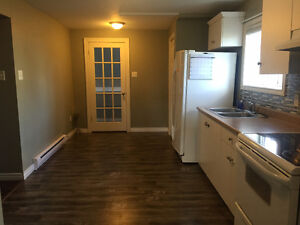 Bright and spacious two bedroom apartment in Southlands St. John's Newfoundland image 4
