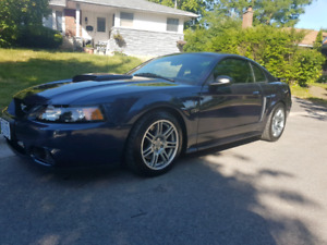 2002 Mustang GT/ Cobra Kit Excellent condition low Km.