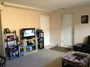 Clean, bright basement suite in Martindale