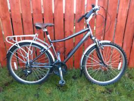 Bike Raleigh