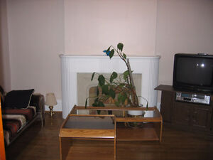 1ST FLOOR PARTIALLY FURNISHED 1 BEDROOM SEMI-PRIVATE APARTMENT